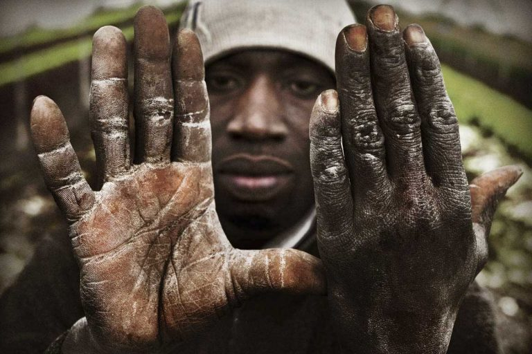 Worker's hands. Moro Musah, from Cote D'Avoire, works for 25 euro a day in greenhouses growing spinach and tomatos.