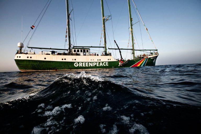 Greenpeace 2010