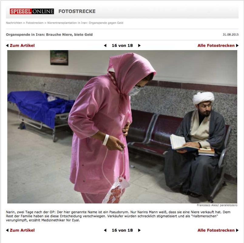 Spiegel on line - Germany - September 2015